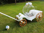 Princess Carriage open cage and pair
